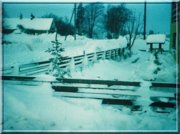 snestorm 1978 danmark